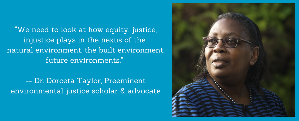 """We need to look at how equity, justice, injustice plays in the nexus of the natural environment, the built environment, future environments."" -- Dr. Dorceta Taylor"