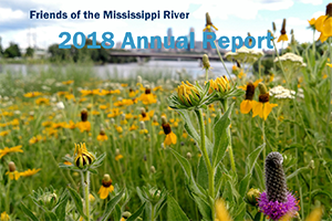 [Image 2018 Annual Report cover]