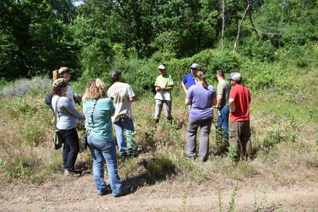 FHR volunteers learn how to identify monarch eggs and caterpillars