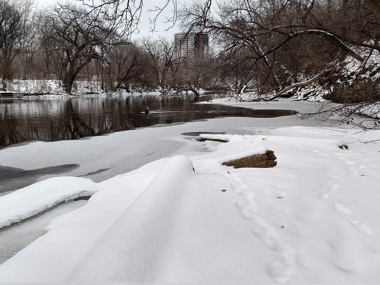 Nicollet Island in snow