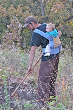 [FMR volunteer planting a prairie with infant child in holder on his back.]
