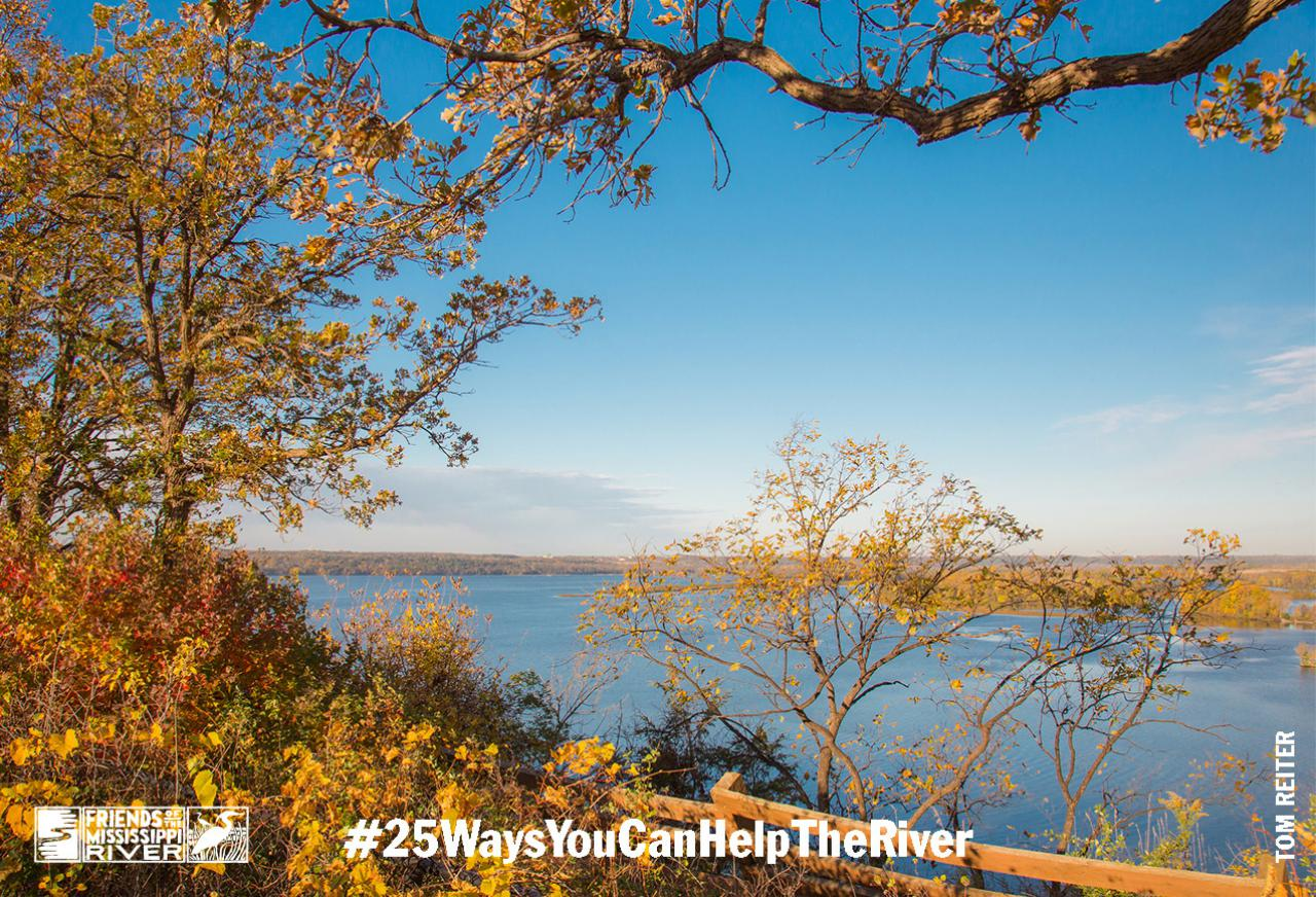 River scene #25waysyoucanhelptheriver
