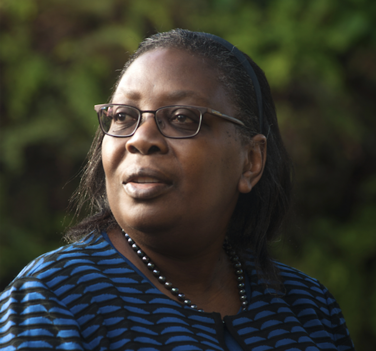 Dr. Dorceta Taylor will be the keynote speaker for this year's 'Evening Celebrating the Mississippi River'!
