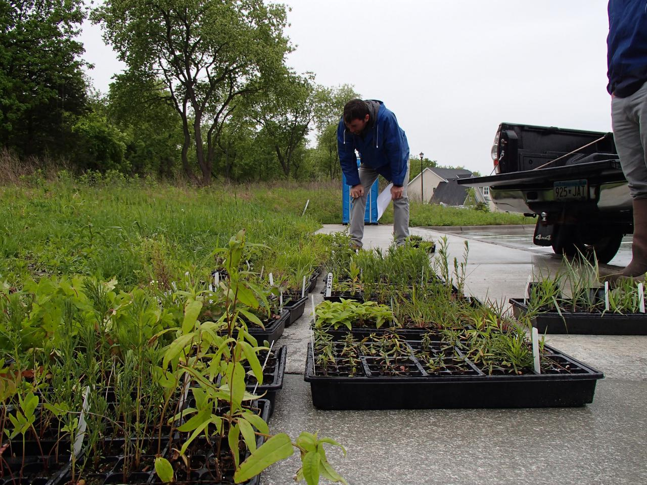 Volunteers prepare to plant in the pollinator gardens at Camel's Hump Park