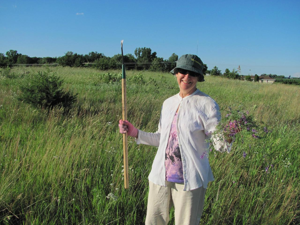 Volunteer tending the rare prairie at the Sand Coulee SNA
