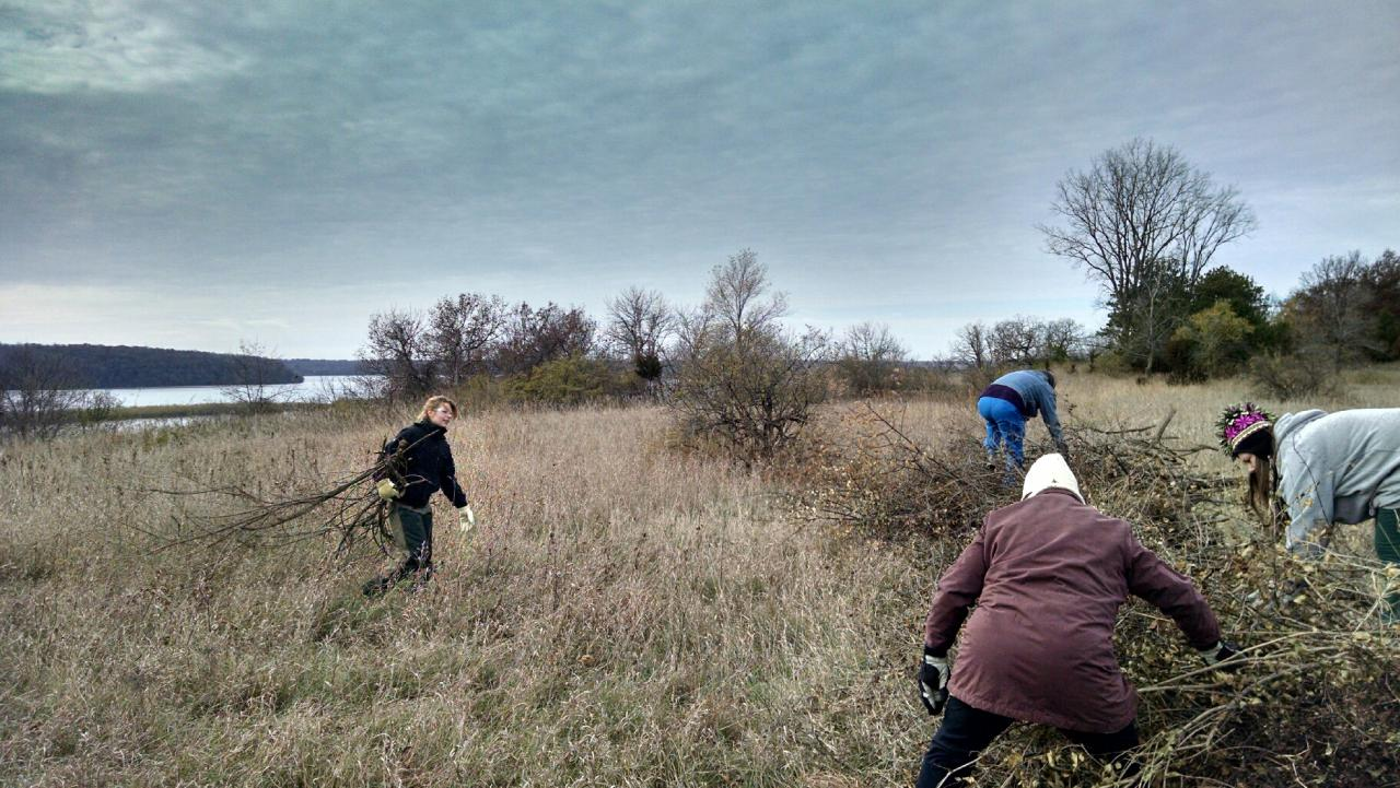 Fall conservation volunteers preserving the woodlands over the Mississippi River.
