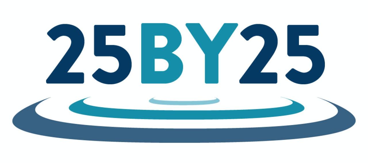 25by25 logo