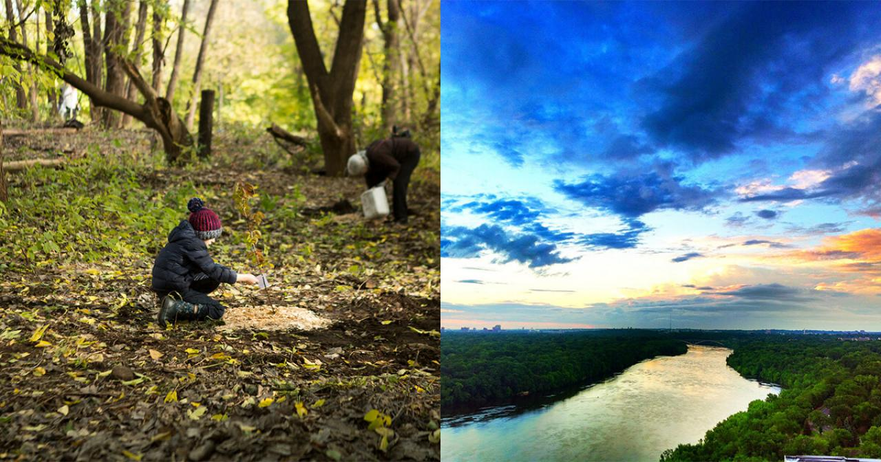 Child plants a tree; Mississippi River and bright sky