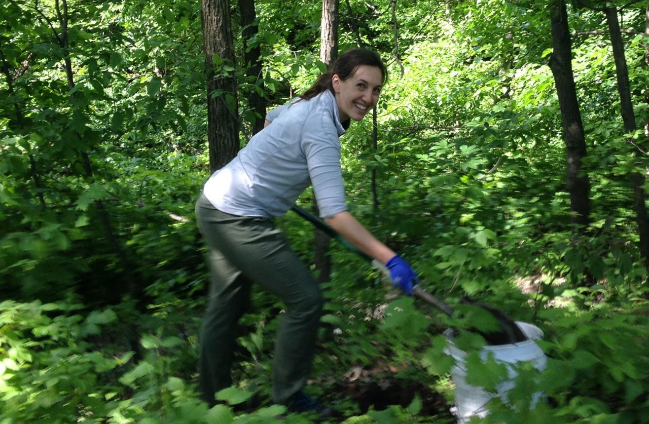 Volunteer planting native shrubs in the oak savanna woodland along the Mighty Mississippi in south Minneapolis.