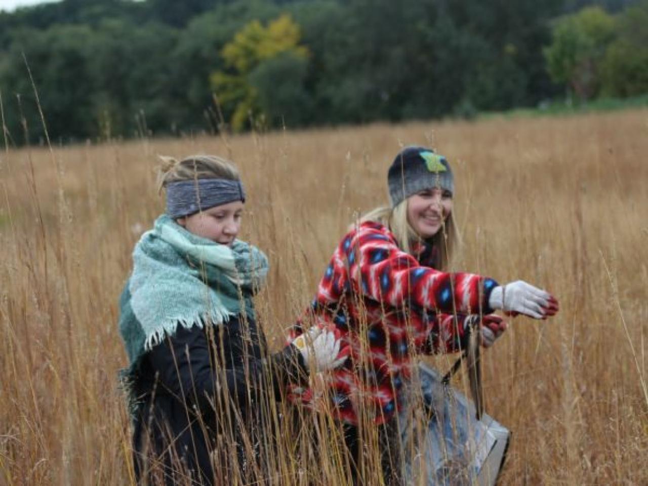 Habitat restoration volunteers collecting native seed in the prairie.