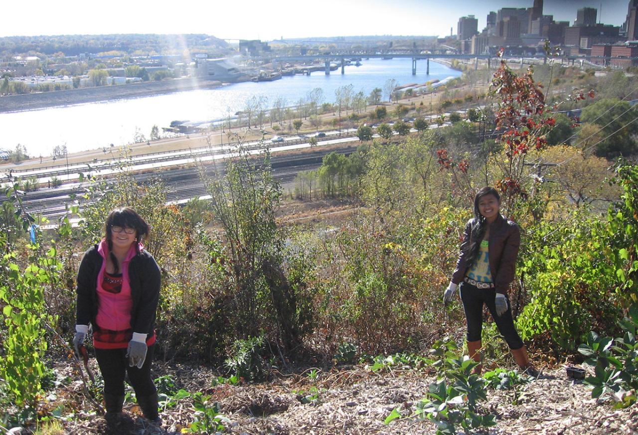 Local teens create habitat, reduce erosion