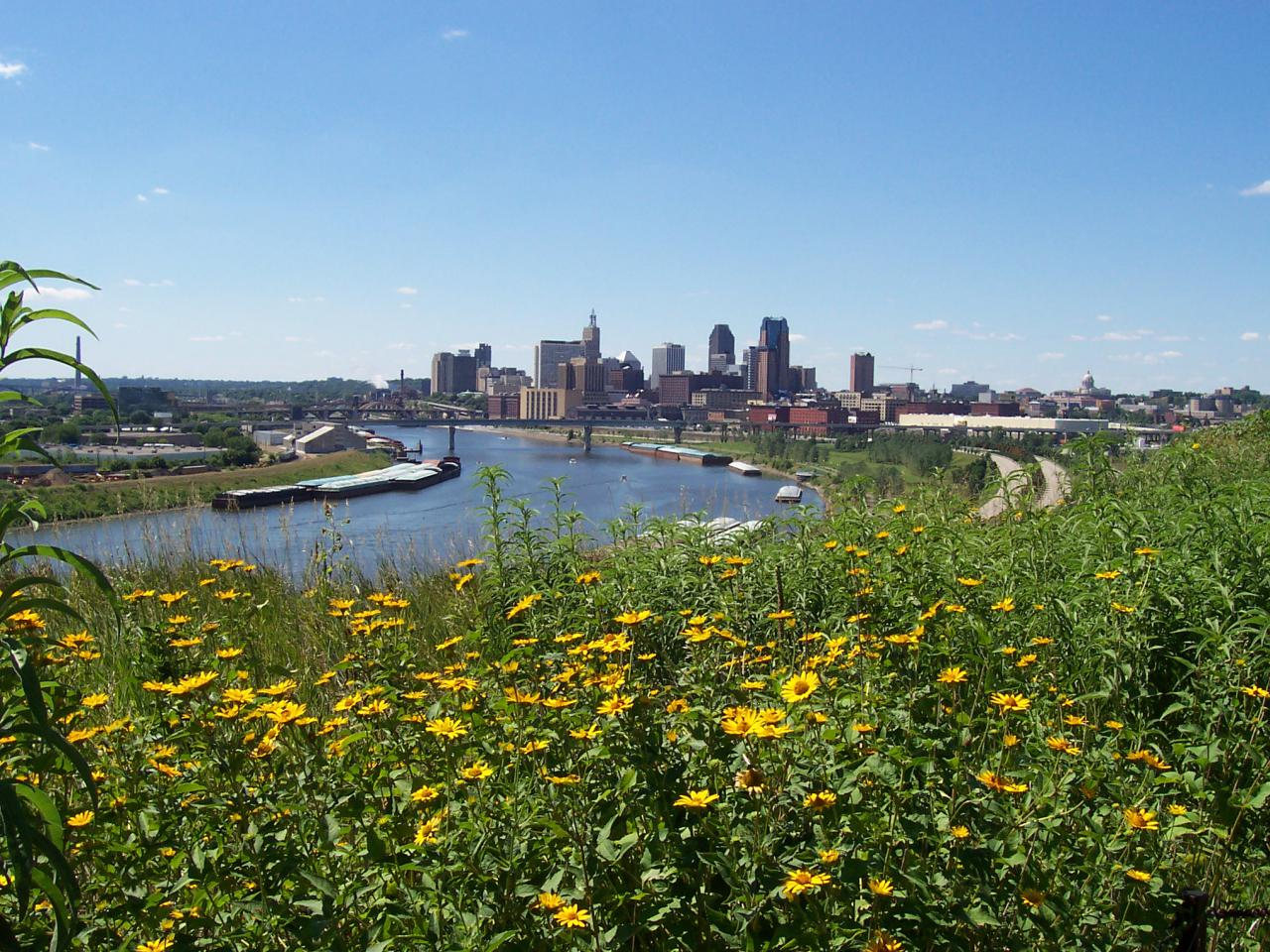 Native prairie installed by volunteers at Indian Mounds Park