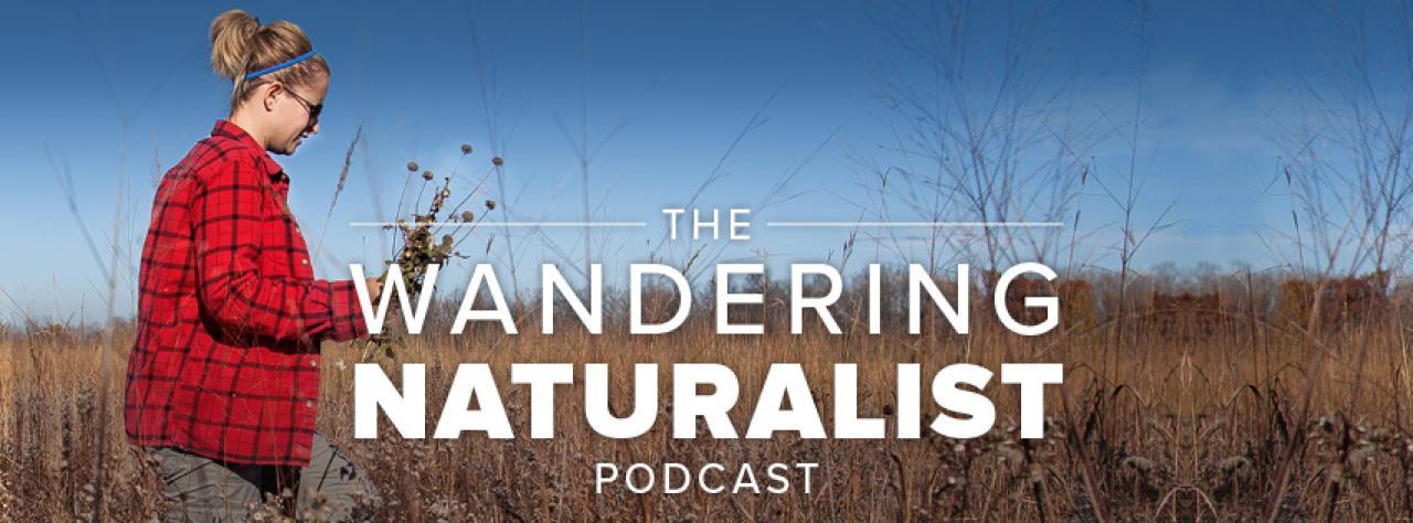 Wandering Naturalist podcast logo