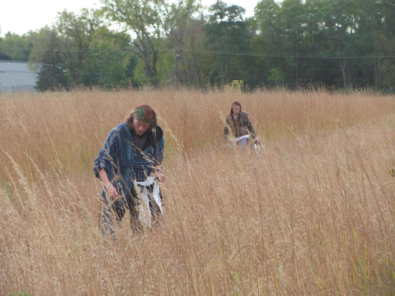 Volunteers collecting native seed at Heritage Village Park