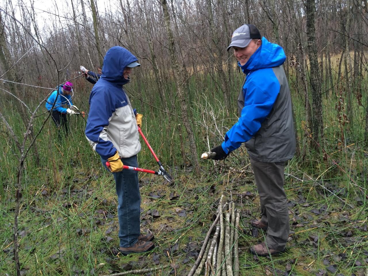 Volunteers preparing live-stakes