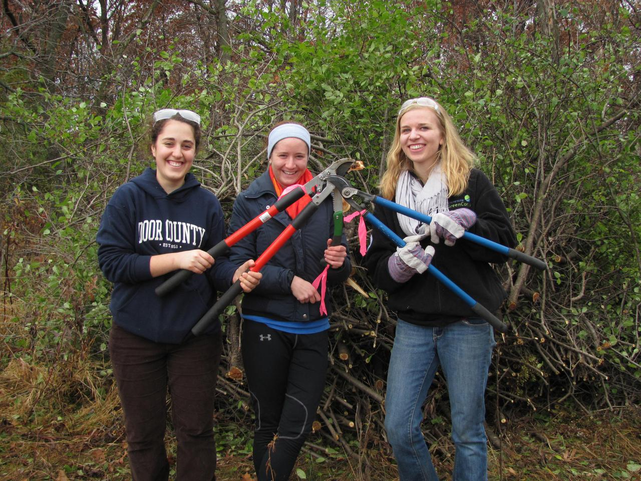 Three volunteers with loppers ready to tackle buckthorn