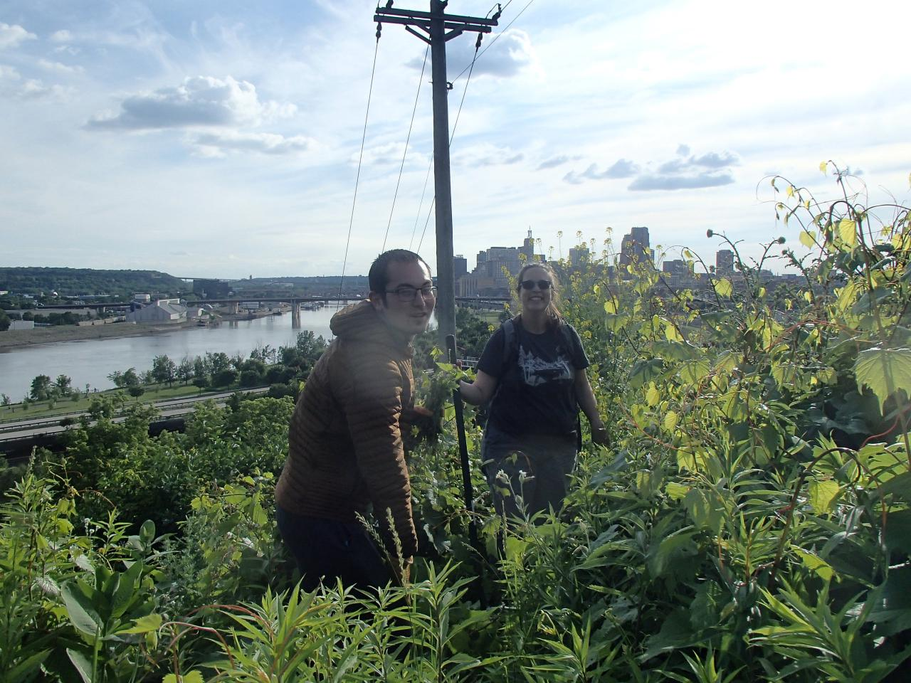 A volunteer and FMR staff member pull invasive plants on the Mounds Park bluff, with the river and St. Paul skyline in the background