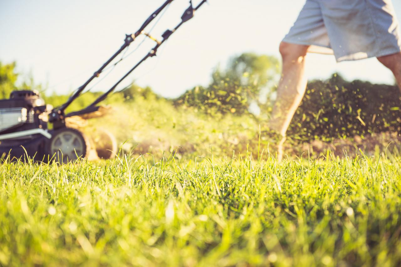 Bagless mowing lawn care