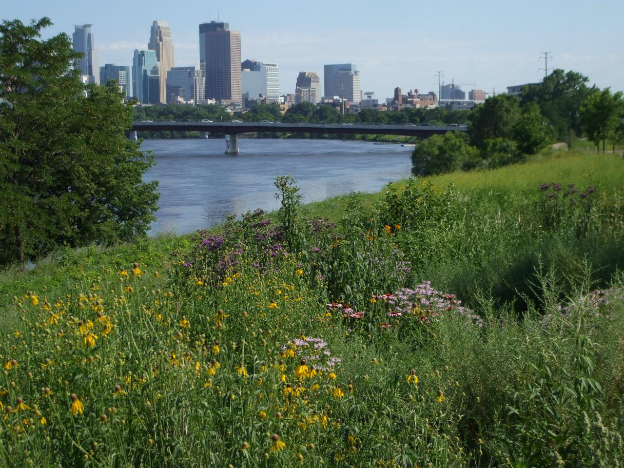 View of downtown Minneapolis from Ole Olson Park in N Mpls