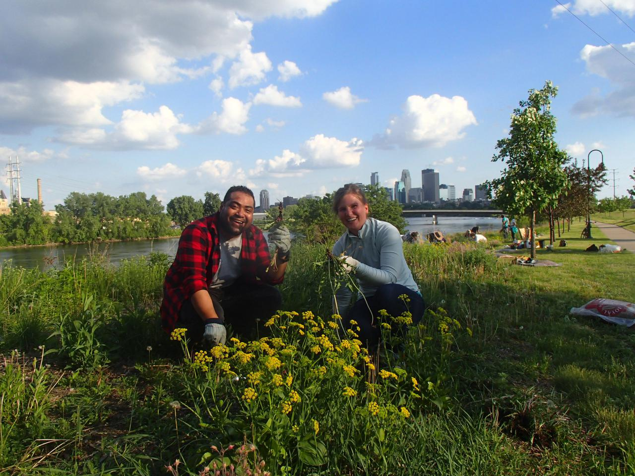 Volunteers tend the prairie at Ole Olson Park with the river and downtown Minneapolis in the background