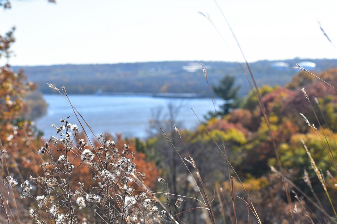 Autumn bluff and blue river
